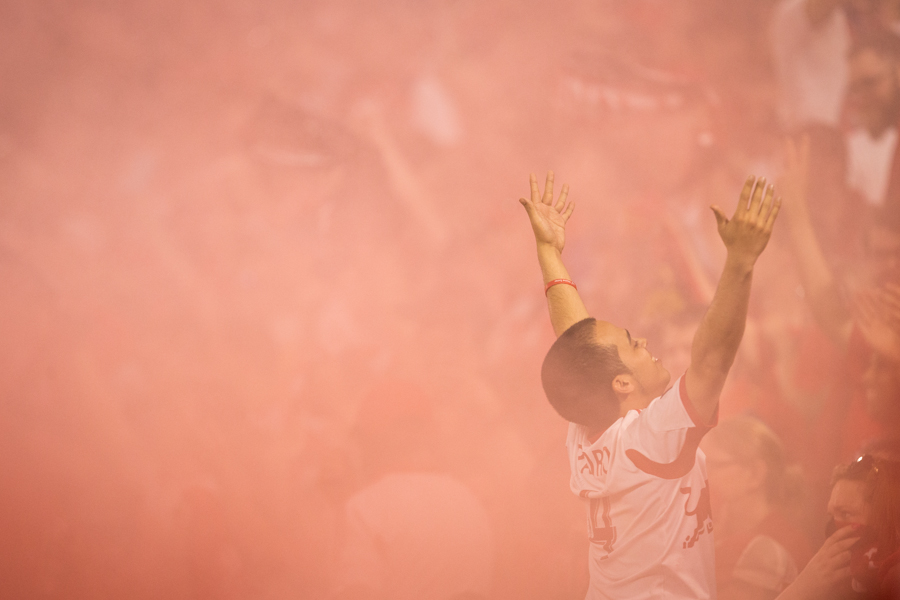 NY Red Bulls Fan : Moments  : NYC-based Portrait, Commercial and Editorial Photographer | Ira L. Black Photography